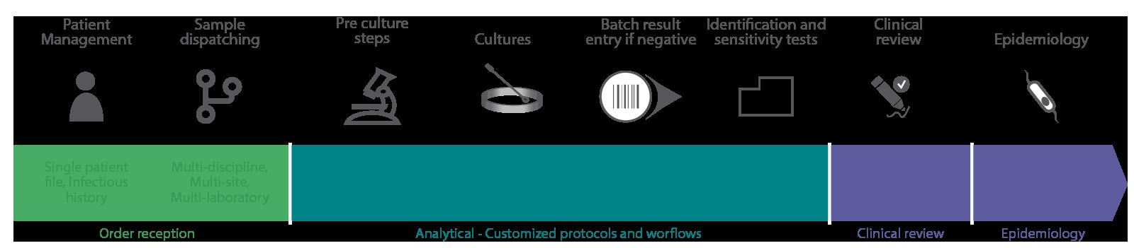 TDNexLabs_Microbiology_Workflow